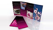The Pearl Spa Brochure